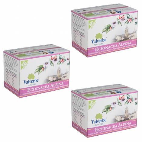 Echinacea Mountain Tea - Gr 30